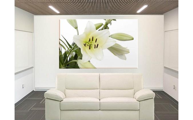 5022-Lirio flor blanco y verde