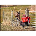 Bicicleta sobre la valla