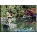 Zen Jardín Zen Japonés Jardín Meditación Calma