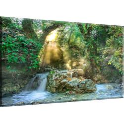 Torrente Selva Arroyo Forestales de Agua