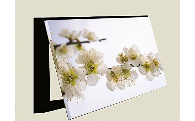 Tapa contador-Flor cerezo difuminada