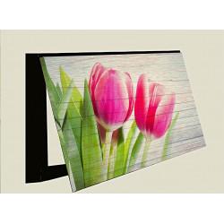 Tulipanes Primavera en Flor