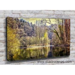 21527-Bosque Lago La Naturaleza con Árboles