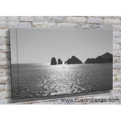 Cabo San Lucas-20005