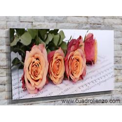 9023-Rosas Amor por la música