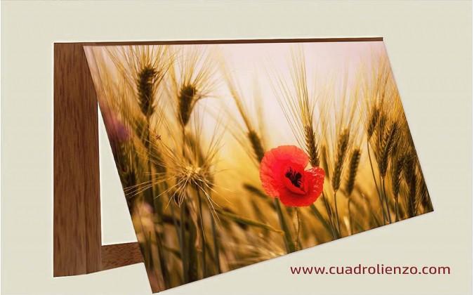 Cubrecontador amapolas entre el trigo