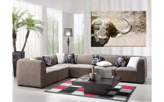 Bufalo selva