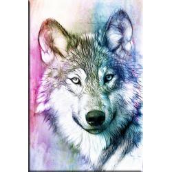 lobo colorido