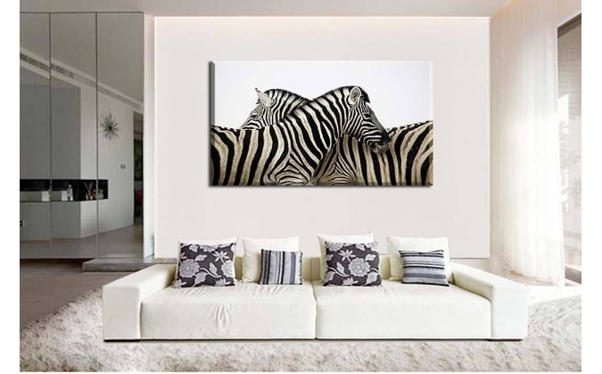pareja de zebras