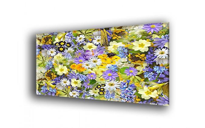 Flores silvestres-2019