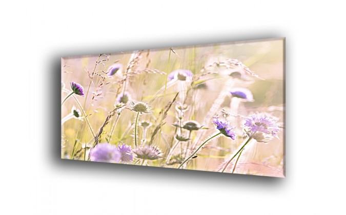 Flores silvestres-2020