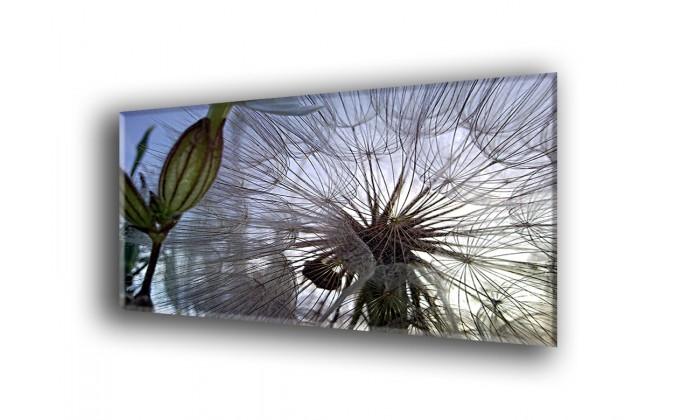 Flower-2022