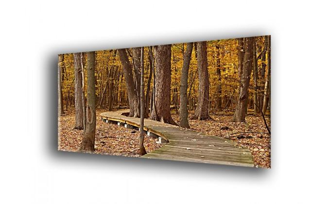 22013-Hojas de otoño