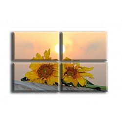 4006-Girasoles al sol