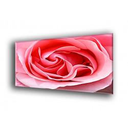 9010-Rosa pétalos