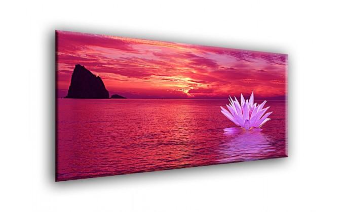 5019-Fondo nenúfares puesta de sol