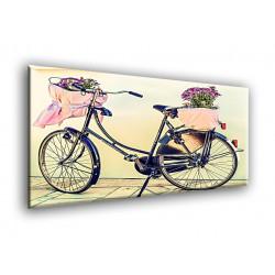 75003-Bicicleta flores cesta