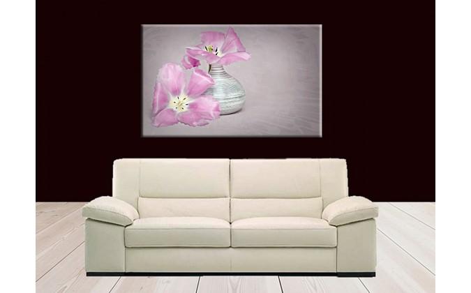 9504-Tulipán flor rosa rosada