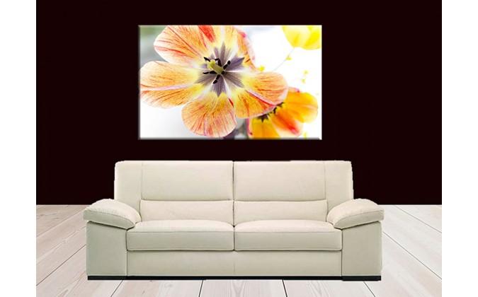 9508-Tulipán naturaleza decorado