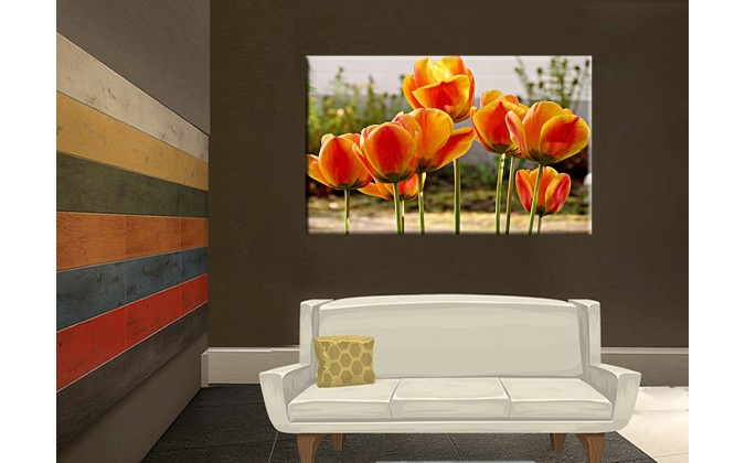 9509-Flor tulipanes primavera naranja