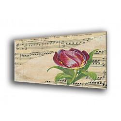 9519-Tulipán con partitura
