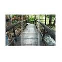 20504-Puente con hojas