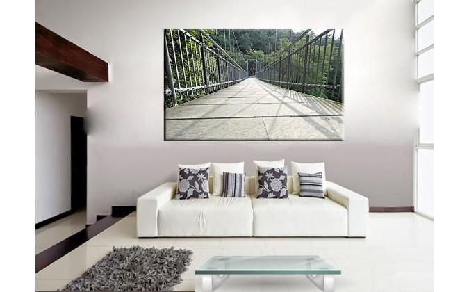 20530-Puente suspención