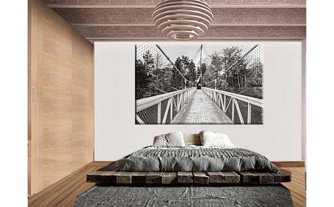 20531-Puente largo