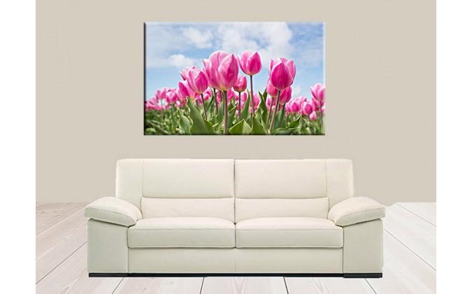 9522-Rosa tulipán bombilla