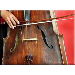 42003-Cello
