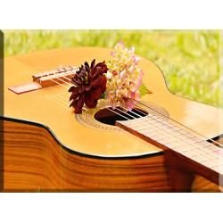 42011-Guitarra Instrumento Musical