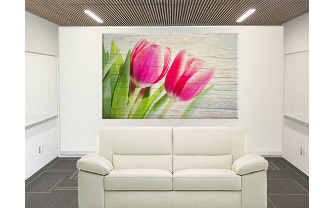 95166-Tulipanes Primavera