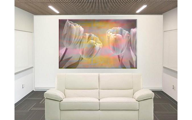 95177-Tulipanes Flores Rosadas