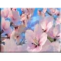 9609-Flor De Sakura Cereza Rosa