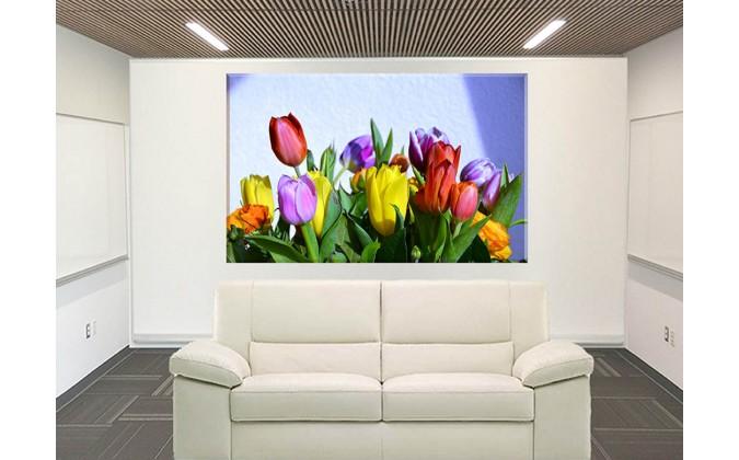 9530-tulipanes variados colores