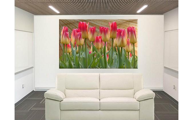 9532-Tulipanes Primavera Pascua