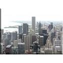 17502-Chicago panoramica