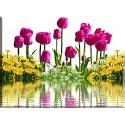 9542-Tulipanes reflejo en el agua