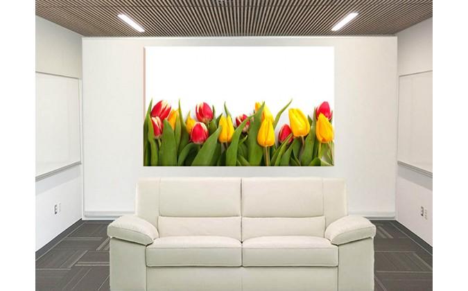 9543-De Colorido Decoración Flora