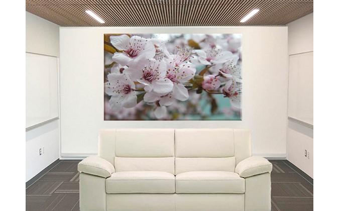 9613- cerezo en flor