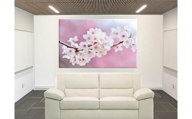 9615-cerezo flor de japon
