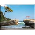 15526-Playa Torii Izu Península Shizuoka