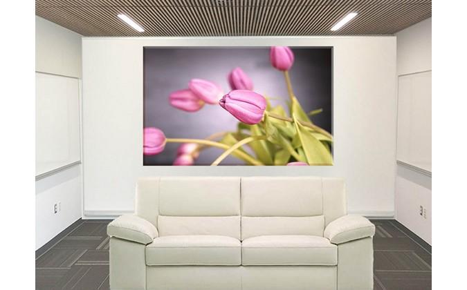 9550-tulipanes difuminados