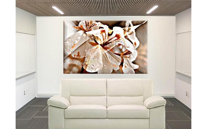 orquidea silver