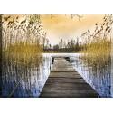 -Paisaje Agua Río Cielo Lago Silencio Tranquilidad_21518