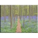 Bosque flores violeta_22016