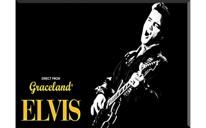 Elvis Presley Músico Celebridades-72026