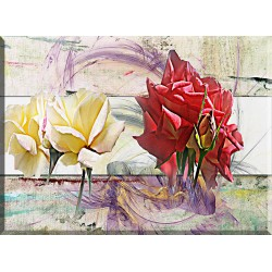 9007-Rosa amarilla y roja