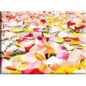 9017-Pétalos de boda